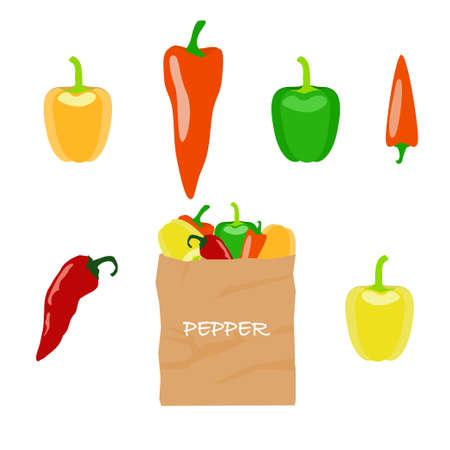 brown paper bag: Pepper in brown paper bag on white background. Stock vector illustration with different kinds of vegetable isolated and packed for healthy food shopping.