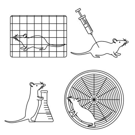 laboratory equipment: Mouse in lab experiments isolated on white background set stock vector illustration of usual procedures using mice. Illustration