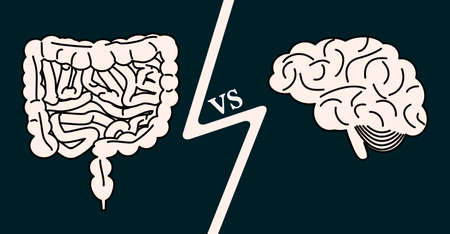 Gut vs brain concept. stock vector illustration of scientific idea of interactions between microbiota and central nervous system.