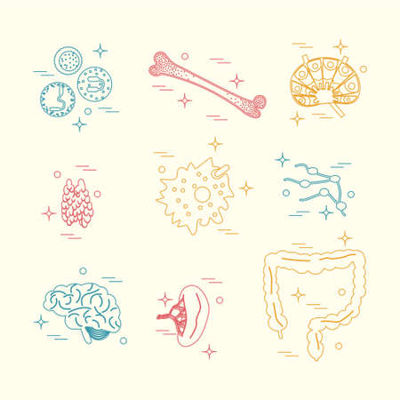Immunsystem Icon-Set. Stock Vektorgrafik Illustration Der ...
