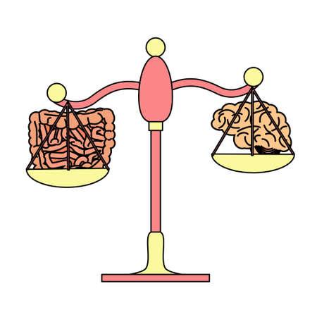 Darm versus hersenen op het schalenconcept. voorraad vectorillustratie van wetenschappelijk idee van microbiota invloed op het centrale zenuwstelsel. Stock Illustratie