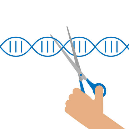 Manual genetic engineering concept. Stock vector illustartion of a human hand cutting DNA double helix with scissors.r Иллюстрация