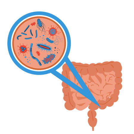 Probiotics bacteria concept flat style illustration. Ilustração