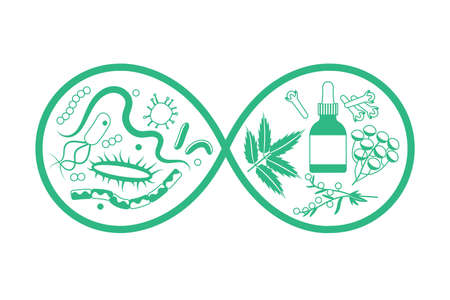 Herbal medicine vs bacteria and parasites. Vector illustration