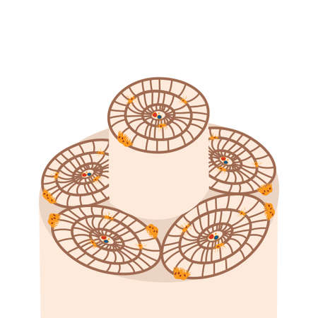 Osteon in a bone structure. Stock vector illustration of osteocyte, osteogenic cell, osteoblast and osteoclast. Illustration
