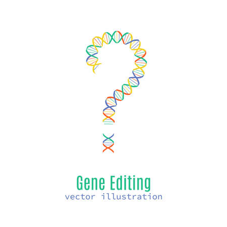 Gene editing vector concept. Stock vector illustration of dna double helix in a shape of a question mark. 向量圖像