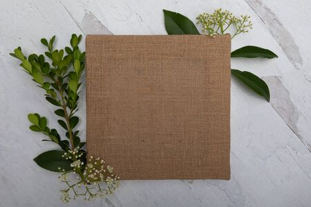 blank empty brown canvas on white wood background surrounded by greenery