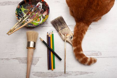 Art school supplies paintbrushes and pencils with cattail Stok Fotoğraf