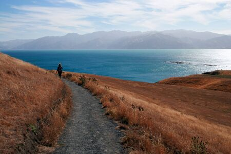marlborough: Person walking on a path in Kaikoura, South Island, New Zealand