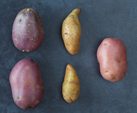Three kinds of potatoes on dark textured surface. Top view