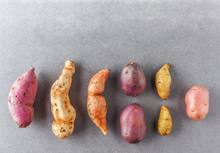 Different kinds of potatoes flat lay with copy space Stock Photo