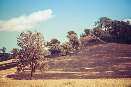 Planned burn in Australian countryside. Burned hills on hot summer day. Stock Photo