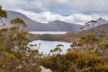 Wombat pool and Dove Lake in Cradle Mountain National Park, Tasmania, Australia Foto de archivo