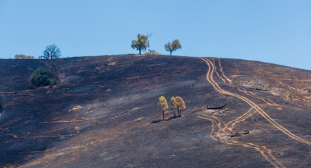 Charred hills after a planned burn at Australian countryside