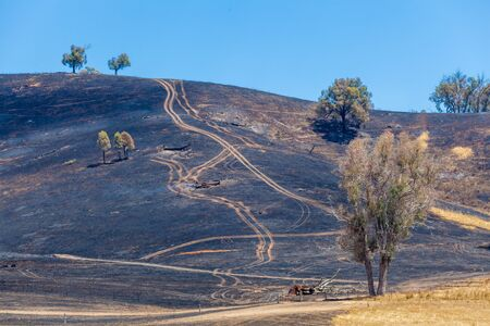 Burned black grass on hills. Australian countryside, Mitta Mitta Valley, Australia Stock Photo - 79708118