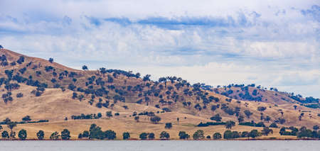 オーストラリアの田園地帯のパノラマ。明るい晴れた日のヒューム湖のほとりの木が散在した黄色の丘。ビクトリア, オーストラリア. 写真素材