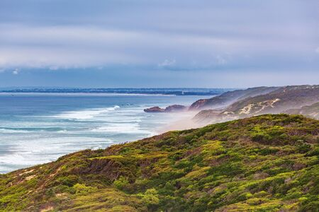 Ocean coastline landscape with coastal vegetation and breaking waves