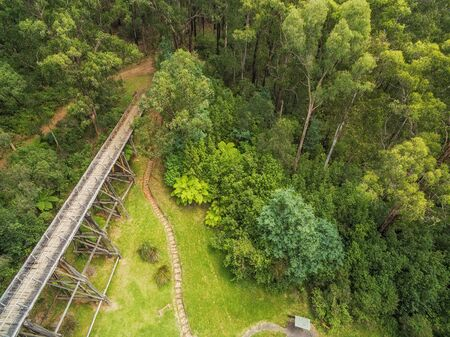 Aerial view of old trestle bridge among ferns and eucalyptuses in Victoria, Australia