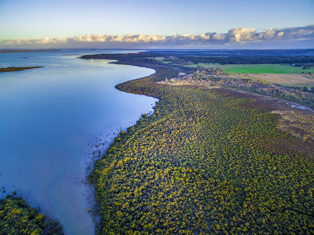 Aerial view of mangroves growing near the beautiful ocean coastline at sunset. Melbourne, Australia