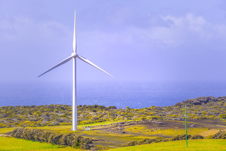 Huge wind turbine standing in a meadow overlooking the ocean with copy space