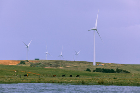 Many wind turbines in agricultural rural area of Australia