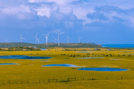 Pastures and wind turbines. Country life and sustainable energy concept Stock Photo