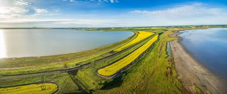 Aerial panorama of a lake and vivid yellow canola fields in Australia