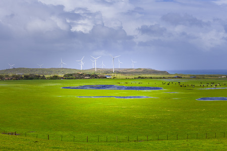 Pastures and meadows with wind farm in the background. Beautiful vivid Australian landscape Stock Photo