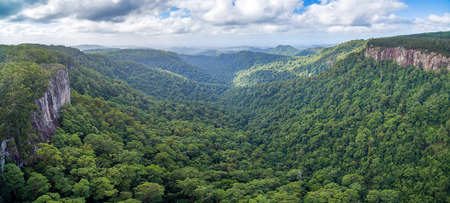 Aerial panorama of rainforest and rugged cliffs in Springbrook National Park, Queensland, Australia