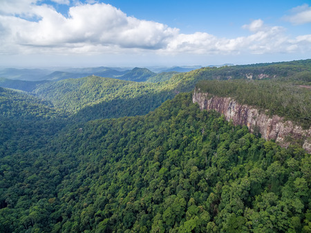 Forested mountains and rugged cliffs at Springbrook National Park, Queensland, Australia