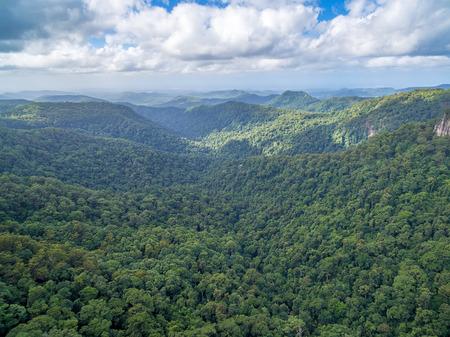 Beautiful landscape of Springbrook National Park, QLD, Australia 写真素材