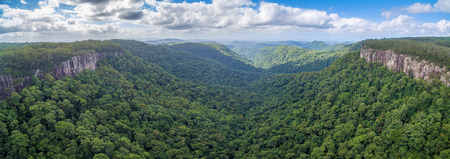 Springbrook National Park - UNESCO World Heritage Area. Queensland, Australia
