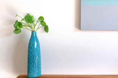 Close-up of Chinese Money Plant in a blue vase on wooden side table against white wall with copy space Stock Photo