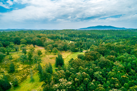 Aerial landscape of native Australian forest with mountain in the background