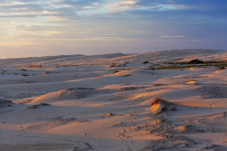 Beautiful glowing sunset over sand dunes near the ocean. Anna Bay, New South Wales, Australia Stock Photo