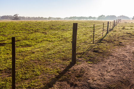 Green pasture at sunrise fenced off Banque d'images - 121797432
