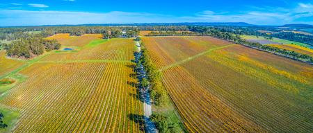 Gravel road passing through scenic winery in autumn. Mornington Peninsula, Australia