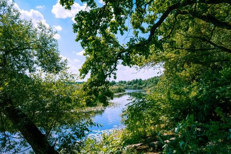 Scenic river Sozh among beautiful green trees on bright summer day in Belarus 免版税图像