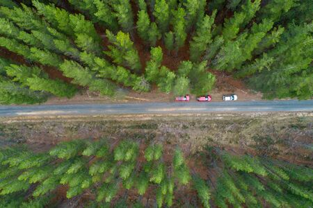 Top down view of pine trees and three parked cars on rural road in Australia Stockfoto