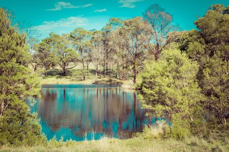Native Australian bush and trees reflecting in a pond on bright sunny day Stockfoto - 128283440