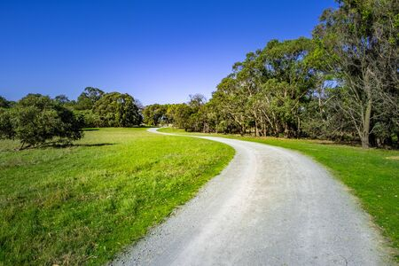 Winding rural road among native Australian trees in bright daylight with clear sky