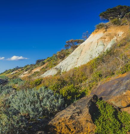 Native bush and erosion of Olivers Hill cliffs in Frankston, Australia Stockfoto