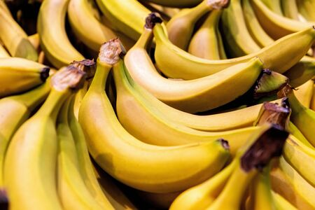 Pile of bright yellow bananas closeup with shallow focus 写真素材
