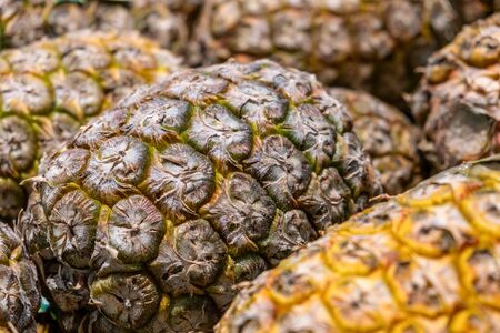 Pile of pineapples closeup to show the texture of their skin 写真素材