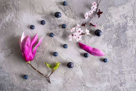 Urban spring concept - blooming magnolia and plum cherry flowers with blueberries and grapes on concrete Stockfoto