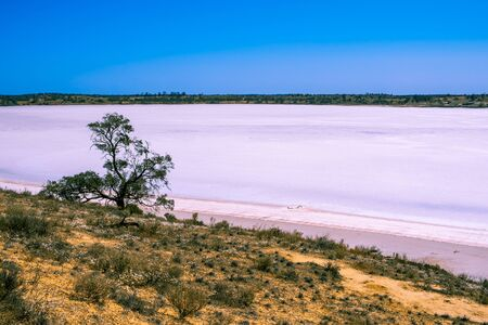 Pink lake Crosbie in Murray-Sunset National Park, Australia