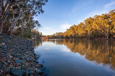 Murray river flowing among natvie Australian bush at sunset