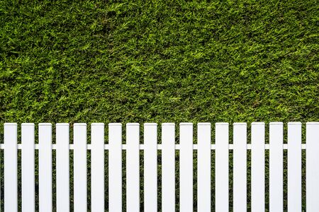 White fence and green hedge background with copy space Фото со стока