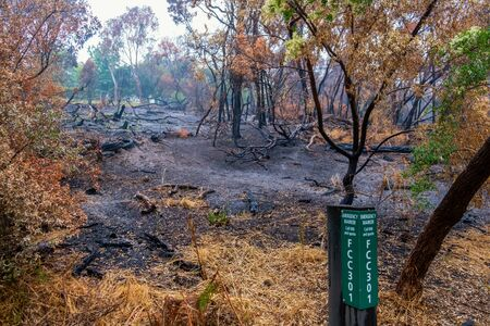Standard emergency marker at nature reserve in front of burned forest in Australia