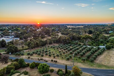 Sunset over trees in Australian rural area - aerial view